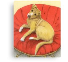 Pitbull Lab Mix Puppy Dog Cathy Peek Pets Canvas Print