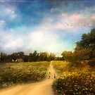 The road that leads to home by John Rivera