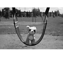 Dog on Swing Photographic Print