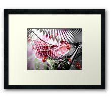 Carnations and Butterflies Framed Print