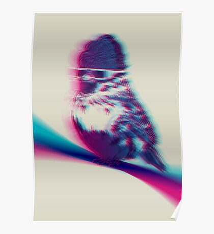 Bird Hair Day Poster