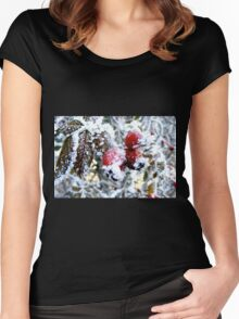 Frosty Berries Women's Fitted Scoop T-Shirt