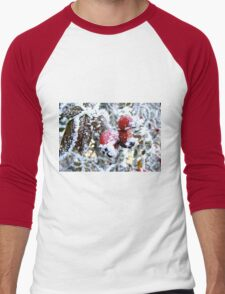 Frosty Berries Men's Baseball ¾ T-Shirt