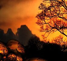 Dreamscape Amber tree by lorainek
