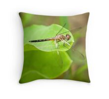 Dragon Fly Portrait Throw Pillow
