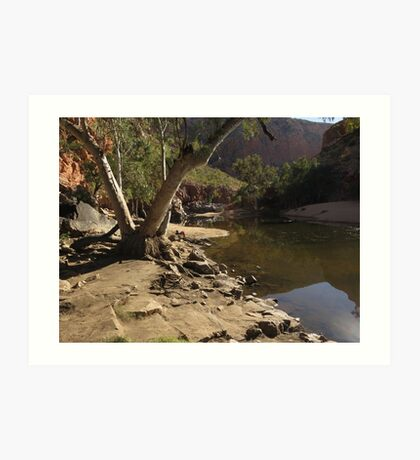 Outback river Art Print
