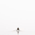 Silent Rowing by CezB