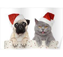 Christmas pug and Kitty cat Poster