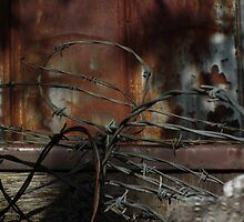 Rust and Barbed Wire by BonnieToll
