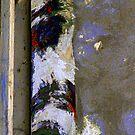 Cosas que veo / Things I see by Haydee  Yordan
