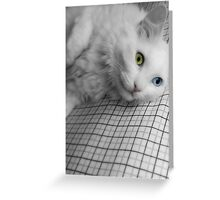 when I gaze into those eyes, all the problems in my world disappear - greeting card Greeting Card