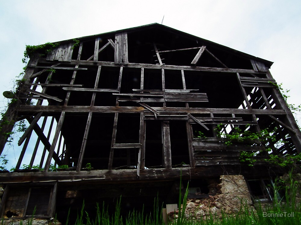 Barn Skeleton by BonnieToll