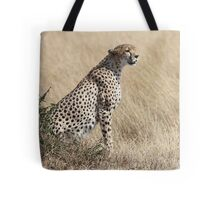 Looking About, Cheetah, Maasai Mara, Kenya Tote Bag