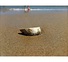 Shell Inspire Photographic Print