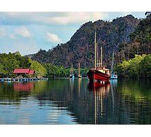 Langkawi Mangroves Photographic Print
