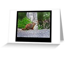 An Herbivore Named Sid Greeting Card