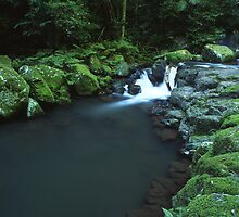 """Cunungra Creek"" ∞ Lamington National Park, QLD - Australia by Jason Asher"