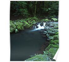 """Cunungra Creek"" ∞ Lamington National Park, QLD - Australia Poster"