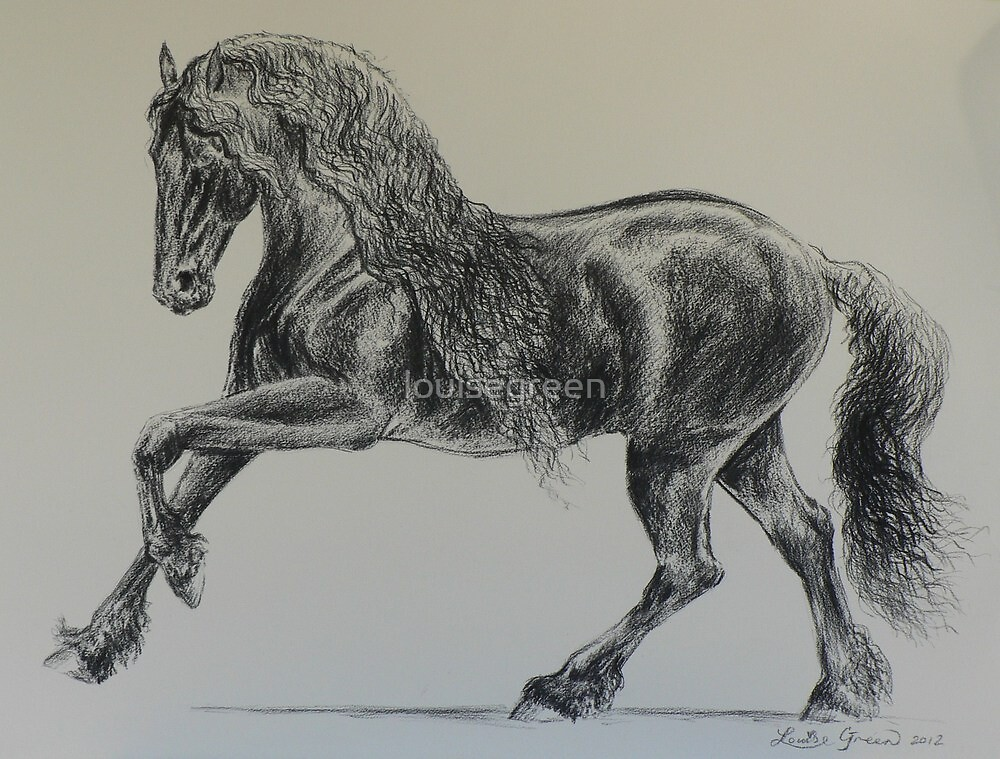Baroque Friesian by louisegreen