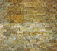 Brick Wall by Chris  Bradshaw