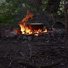 Making dinner on bonfire by alcounit