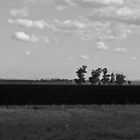 Central Victoria  by awursterphotos