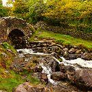 Ashness Bridge in Borrowdale, Cumbria, UK by Elana Bailey