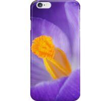 Garden Treasures iPhone Case/Skin