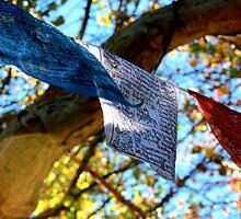 Prayer Flags by Fledermaus