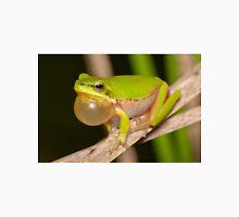 Calling Dwarf Tree Frog - Litoria fallax Classic T-Shirt