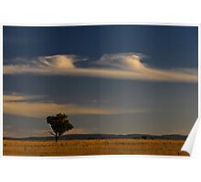 Liverpool Plains Poster