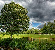 It Just isn't Cricket.. by NeilAlderney