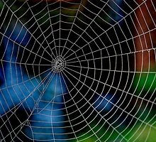 Spider Web. by relayer51