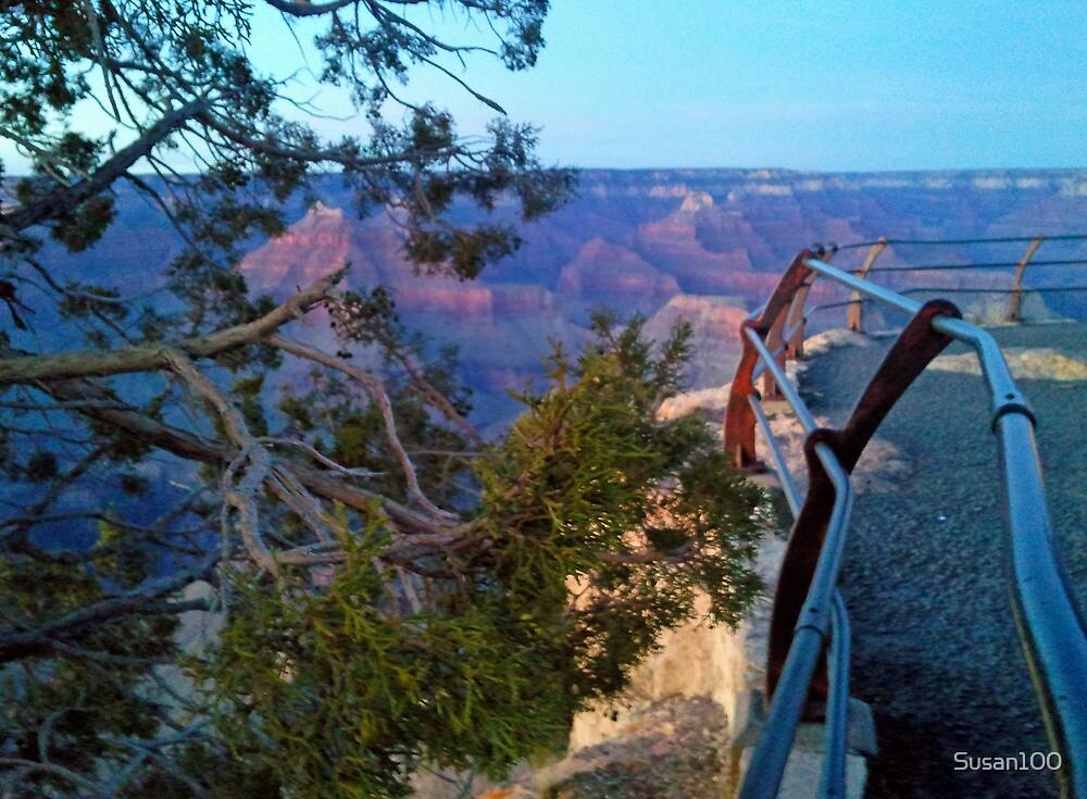 Canyon 1 by Susan100