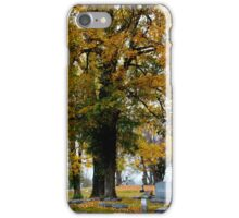 RAINY AUTUMN DAY IN THE CEMETERY iPhone Case/Skin