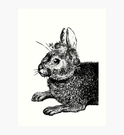 The Rabbit and Roses | Black and White Art Print