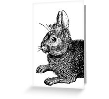 The Rabbit & Roses | Black & White Greeting Card