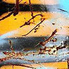 Yellow Black Yellow Black Blue by Vikki-Rae Burns