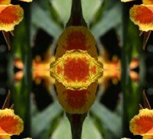 Reflections on a Canna Lily Sticker