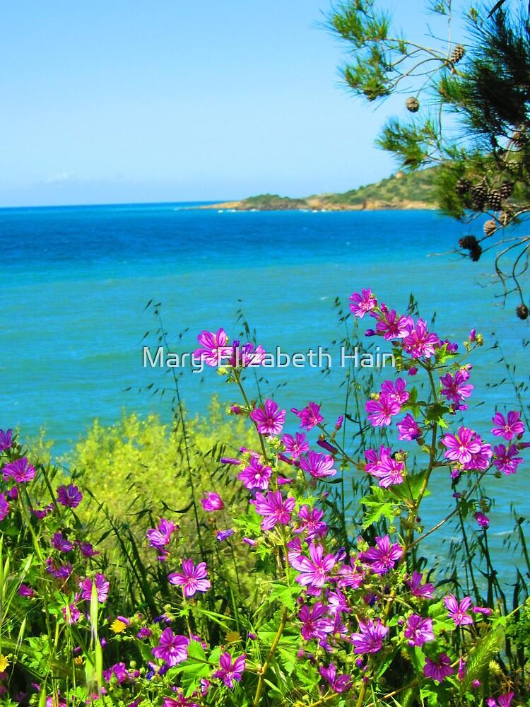 Purple Spray Above the Aegean Sea by M-EK