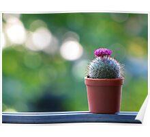 Mini Cactus Poster