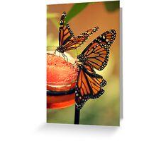 Monarchs Greeting Card