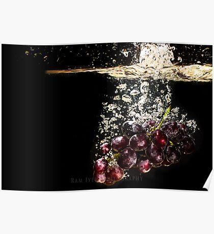 Grape wine.... SPLASH Poster