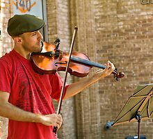 Fiddler by Thad Zajdowicz