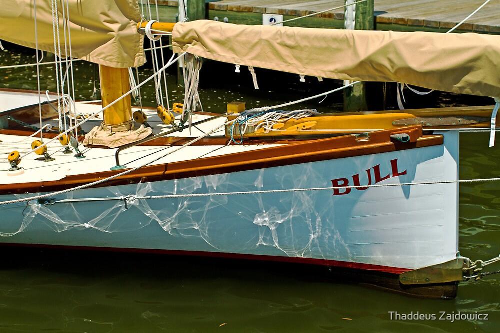 Bull by Thad Zajdowicz