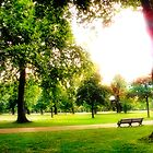 Kensington Gardens  by Wintermute69