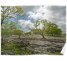 Oxenber Limestone Poster
