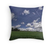 Summer Scape Throw Pillow