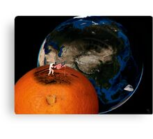 fruity space Canvas Print