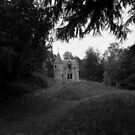 The Haunted House by Coyroy